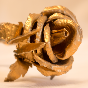 gold_butterfly_rose